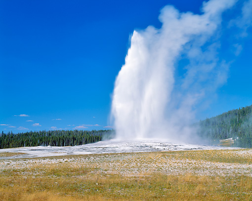 LAN 07 GR0081 01 © Kimball Stock Old Faithful At Yellowstone National Park, Wyoming