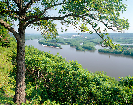 LAN 07 GR0086 01 © Kimball Stock Pikes Peak State Park Overlooking Mississippi River In Marquette, Iowa
