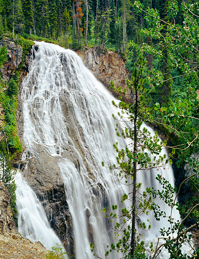 LAN 07 GR0112 01 © Kimball Stock Union Falls During Summer At Yellowstone National Park, Wyoming