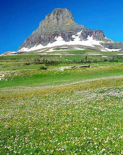LAN 07 GR0118 01 © Kimball Stock Logan Pass And Clements Mountain In Glacier National Park, Montana