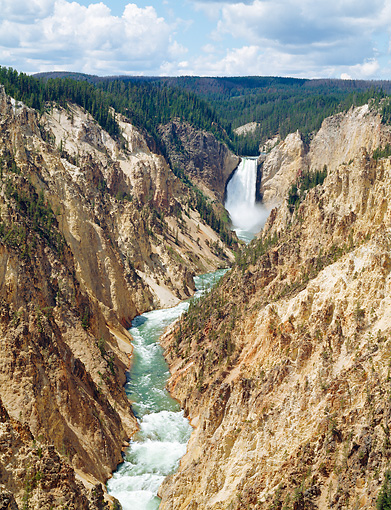 LAN 07 GR0120 01 © Kimball Stock View Of Lower Yellowstone Falls From Artist Point In Yellowstone National Park, Wyoming