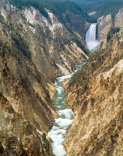 LAN 07 GR0121 01 © Kimball Stock View Of Lower Yellowstone Falls From Artist Point In Yellowstone National Park, Wyoming