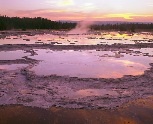 LAN 07 GR0139 01 © Kimball Stock Great Fountain Geyser At Yellowstone National Park
