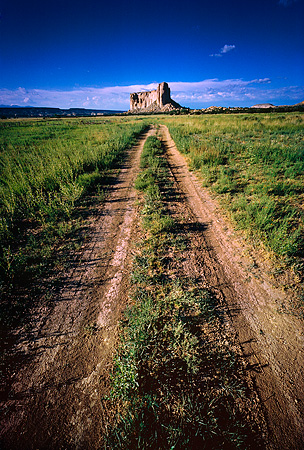 LAN 07 MR0020 01 © Kimball Stock Pathway In Field To Mountain New Mexico