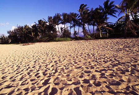 LAN 07 MR0026 01 © Kimball Stock Beach Scene North Shore Kauai, Hawaii