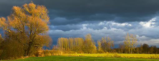 LAN 08 KH0013 01 © Kimball Stock Storm Over Field In Autumn France