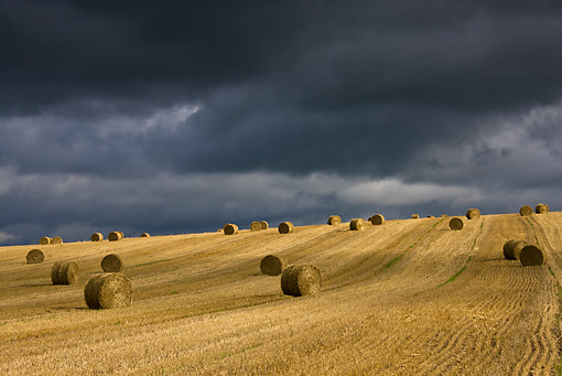 LAN 08 KH0037 01 © Kimball Stock Stubble And Straw Bales Under Stormy Sky At End Of Summer