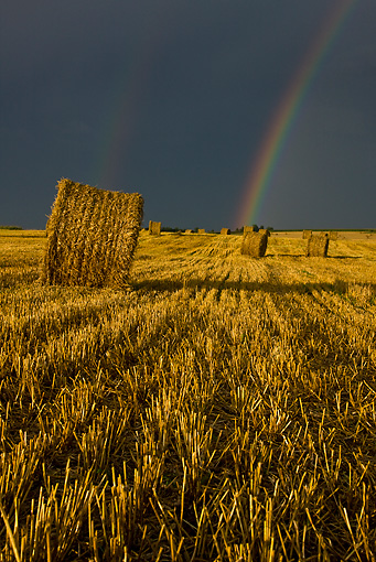 LAN 08 KH0040 01 © Kimball Stock Stubble And Straw Bales Under Stormy Sky With Rainbow