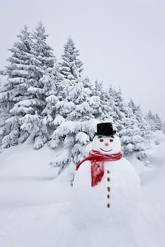 LAN 08 KH0043 01 © Kimball Stock Snowman On Edge Of Snowy Fir Forest In Falling Snow