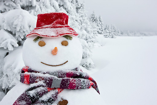 LAN 08 KH0046 01 © Kimball Stock Close-Up Of Snowman On Edge Of Snowy Fir Forest