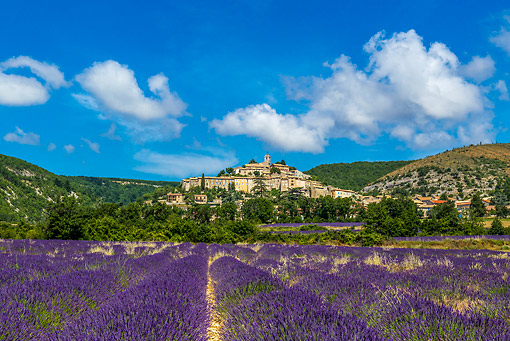 LAN 08 KH0108 01 © Kimball Stock Village Of Banon And Lavender Field In Alpes De Haute Provence, France