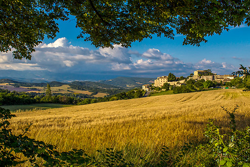 LAN 08 KH0109 01 © Kimball Stock Vacheres Village And Grain Field In Alpes De Haute Provence, France