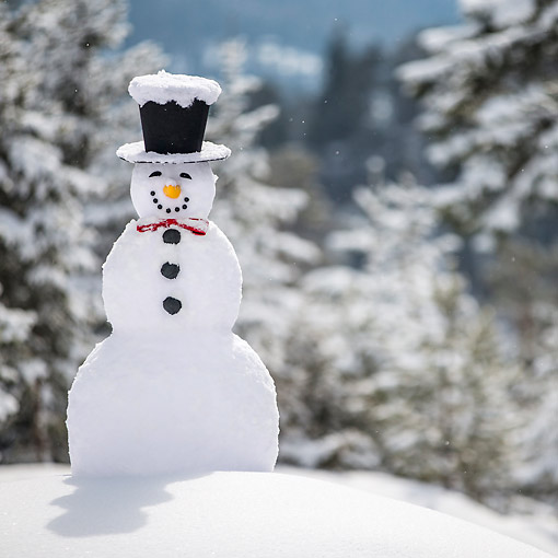 LAN 08 KH0130 01 © Kimball Stock Snowman Grinning With Top Hat And Bow Tie In Snow
