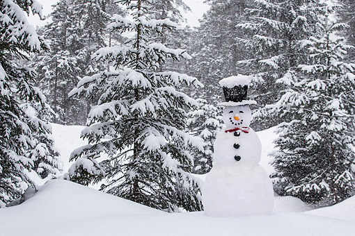 LAN 08 KH0131 01 © Kimball Stock Snowman Grinning With Top Hat And Bow Tie In Snow