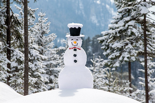 LAN 08 KH0132 01 © Kimball Stock Snowman Grinning With Top Hat And Bow Tie In Snow