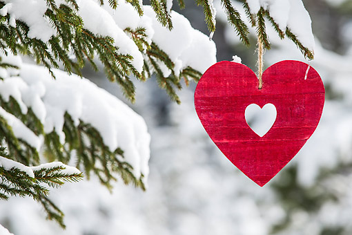 LAN 08 KH0133 01 © Kimball Stock Red Wooden Heart Hanging From Snowy Tree In Winter