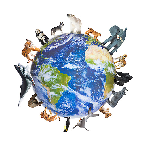 LAN 09 KH0020 01 © Kimball Stock Earth With Endangered Animals Standing In Circle On White Seamless