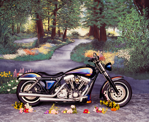 MOT 01 RK0244 01 © Kimball Stock Harley-Davidson FLT Profile View Forest Background Studio