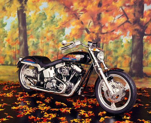 MOT 01 RK0253 05 © Kimball Stock 1994 Harley-Davidson Softail Hot Rod Black 3/4 Front View On Fall Leaves