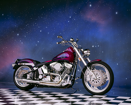 MOT 01 RK0272 09 © Kimball Stock 1995 Titan Gecko Purple 3/4 Side View On Checkered Floor Starry Night