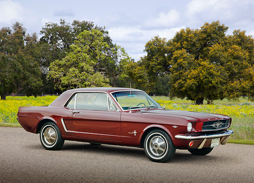 MST 01 BK0052 01 © Kimball Stock 1964 1/2 Ford Mustang Maroon 3/4 Front View On Pavement By Field Of Wildflowers