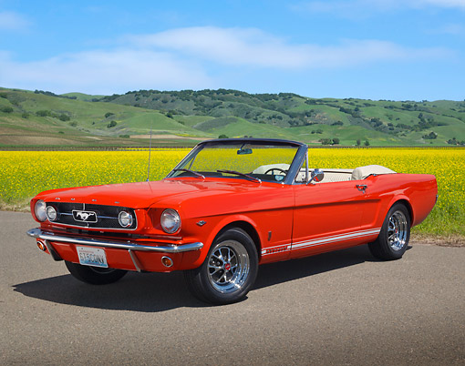 MST 01 BK0053 01 © Kimball Stock 1965 Ford Mustang Convertible Poppy Red 3/4 Front View On Pavement By Field Of Wildflowers