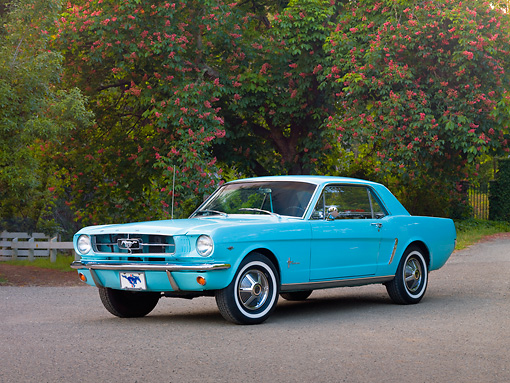MST 01 RK1132 01 © Kimball Stock 1965 Ford Mustang Sea Foam Green 3/4 Front View On Pavement By Trees