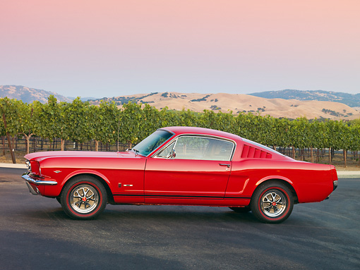 MST 01 RK1141 01 © Kimball Stock 1966 Ford Mustang GT T-5 Red Profile View On Pavement By Vineyard