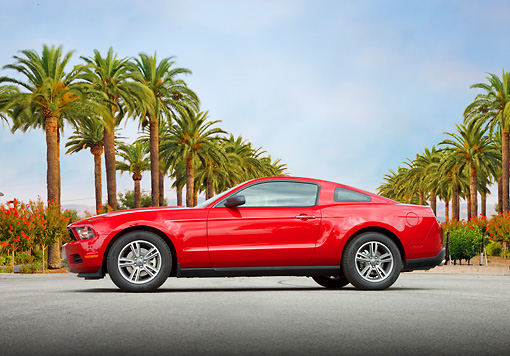 MST 01 RK1243 01 © Kimball Stock 2011 Ford Mustang V6 Coupe Red Profile View On Pavement By Palm Trees