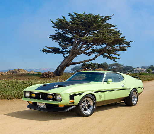 MST 01 RK1345 01 © Kimball Stock 1971 Ford Mustang Mach 1 Grabber Lime 3/4 Front View On Sand By Tree