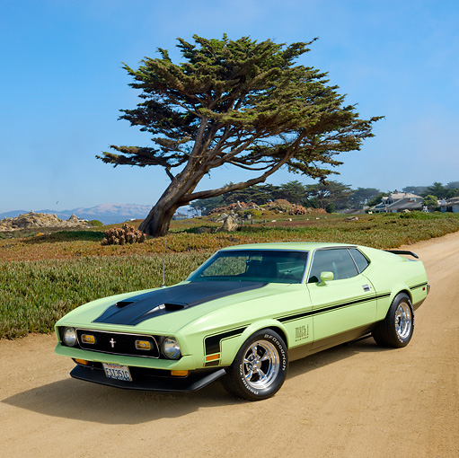 MST 01 RK1346 01 © Kimball Stock 1971 Ford Mustang Mach 1 Grabber Lime 3/4 Front View On Sand By Tree