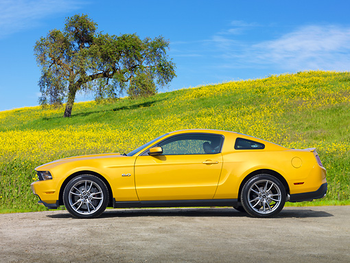 MST 01 RK1411 01 © Kimball Stock 2011 Ford Mustang GT Yellow Profile View On Pavement By Grassy Hill