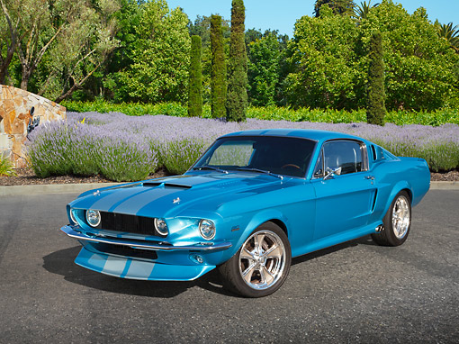 MST 01 RK1621 01 © Kimball Stock 1970 Ford Mustang Blue 3/4 Front View On Pavement By Purple Flowers And Shrubs
