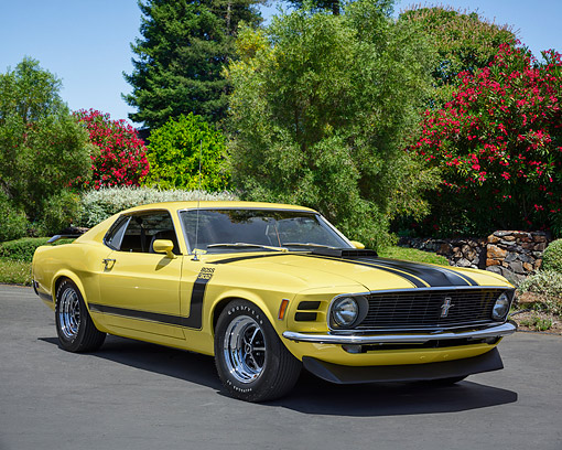 MST 01 RK1669 01 © Kimball Stock 1970 Ford Mustang Boss 302 Yellow 3/4 Front View By Trees