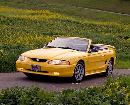 MST 01 RK0013 11 © Kimball Stock 1994 Ford Mustang GT Convertible Yellow 3/4 Front View By Yellow Flower Field