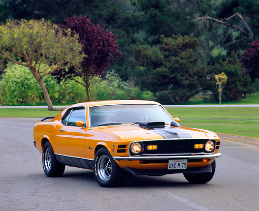 MST 01 RK0178 01 © Kimball Stock 1970 Ford Mustang Mach 1 Grabber Orange 3/4 Front View On Pavement By Trees