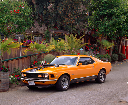 MST 01 RK0182 04 © Kimball Stock 1970 Ford Mustang Mach 1 Grabber Orange 3/4 Front View On Pavement By Plants And Trees