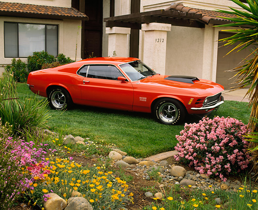 MST 01 RK0357 06 © Kimball Stock 1970 Ford Mustang Boss 429 Orange Side 3/4 View On Grass
