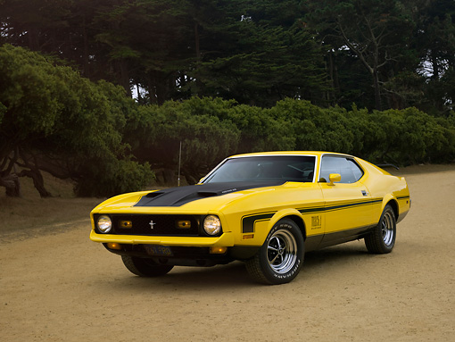MST 01 RK0931 01 © Kimball Stock 1972 Ford Mustang Mach 1 429 Ram Air Yellow Low 3/4 Front View On Dirt Trees Background