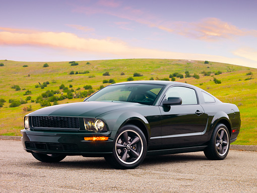 MST 01 RK1029 01 © Kimball Stock 2008 Ford Mustang Bullitt Green 3/4 Front View By Grass Hill