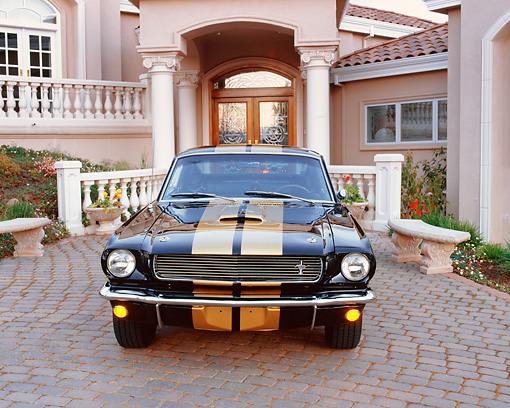 MST 03 RK0075 01 © Kimball Stock 1966 Shelby Hertz Mustang Black And Gold Head On Shot In Front Of House Parking Lights On