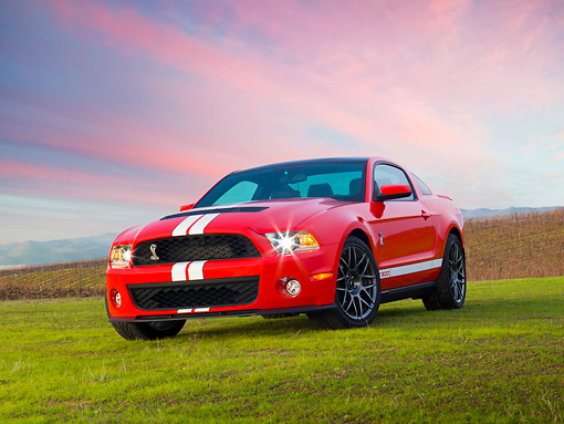MST 03 RK0912 01 © Kimball Stock 2011 Shelby Ford Mustang GT500 SVT Red With White Stripes 3/4 Front View On Grass At Dusk