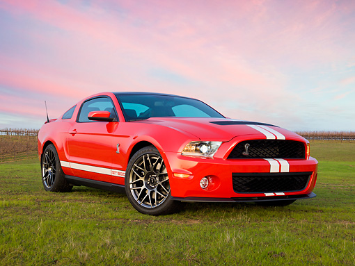 MST 03 RK0913 01 © Kimball Stock 2011 Shelby Ford Mustang GT500 SVT Red With White Stripes 3/4 Front View On Grass At Dusk