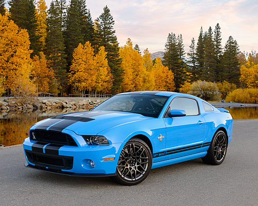 MST 03 RK0925 01 © Kimball Stock 2013 Ford Mustang Shelby GT 500 Grabber Blue 3/4 Front View On Pavement By Autumn Trees