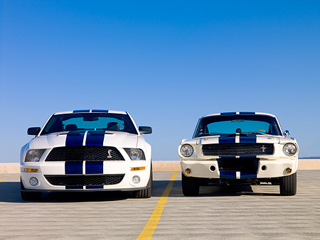 MST 03 RK0156 01 © Kimball Stock 2007 GT500 And 1966 GT350 Ford Shelby White Blue Stripe Low Head On View On Pavement