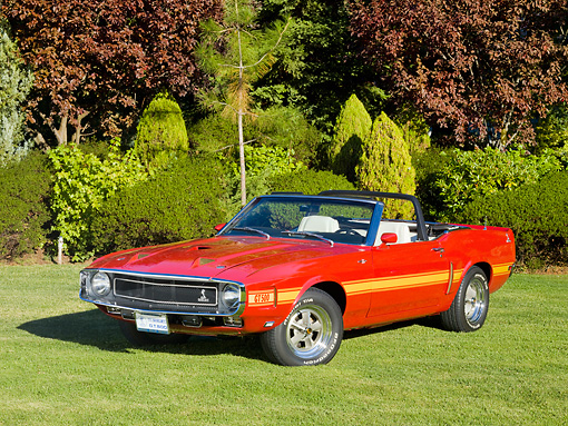 MST 03 RK0194 01 © Kimball Stock 1969 Ford Mustang Shelby GT 500 Convertible Red With Yellow Stripe 3/4 Front View On Grass By Trees