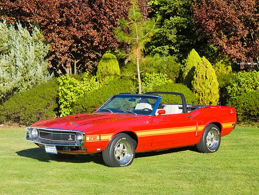 MST 03 RK0197 01 © Kimball Stock 1969 Ford Mustang Shelby GT 500 Convertible Red With Yellow Stripe 3/4 Front View On Grass By Trees