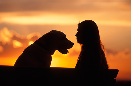 PEO 02 DB0001 01 © Kimball Stock Silhouette Shot Of Woman And Dog At Sunset