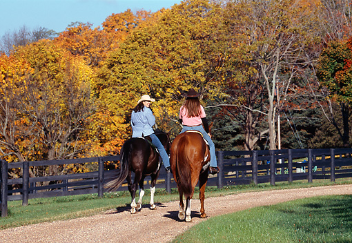 PEO 04 DS0005 01 © Kimball Stock Two Women Riding Horses By Fence And Autumn Forest