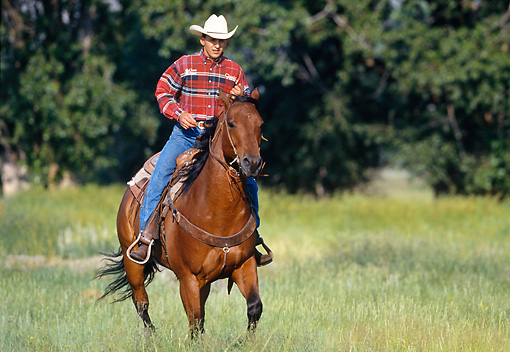PEO 04 DS0006 01 © Kimball Stock Man Riding Horse In Field